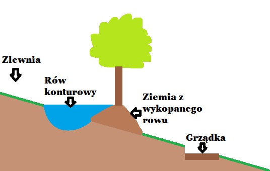 Rów konturowy, wał konturowy, swale. Źródła wody, gromadzenie wody na działce.