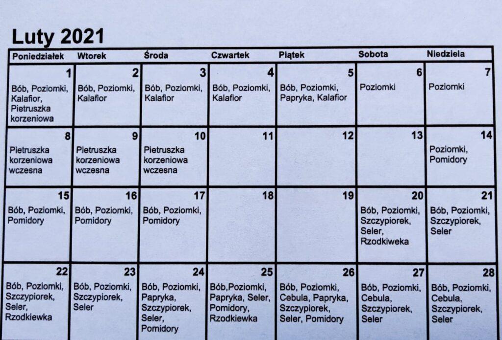 Plan siewu w lutym